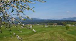 golfplatz6